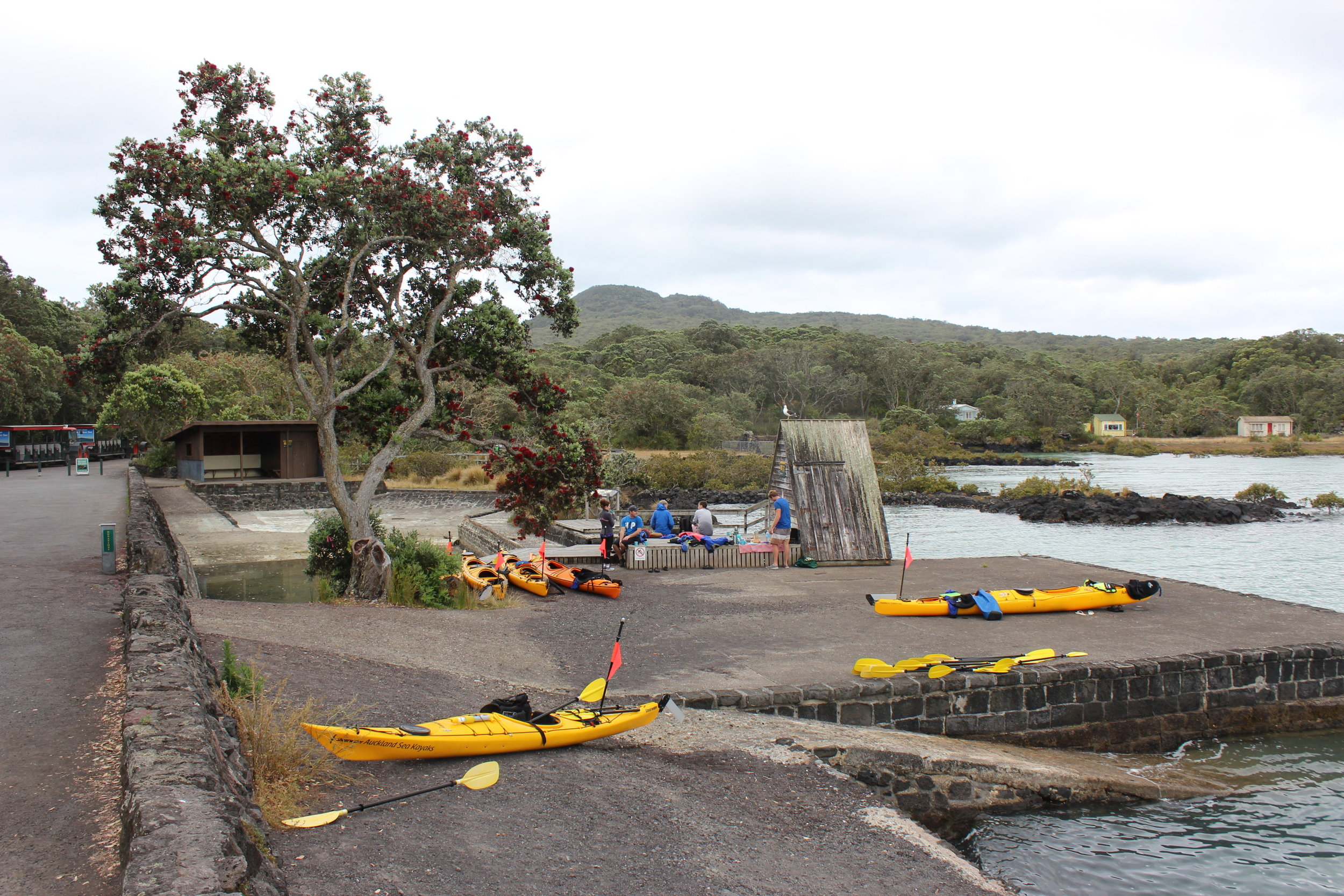 Sunset Kayak to Rangitoto Island 2