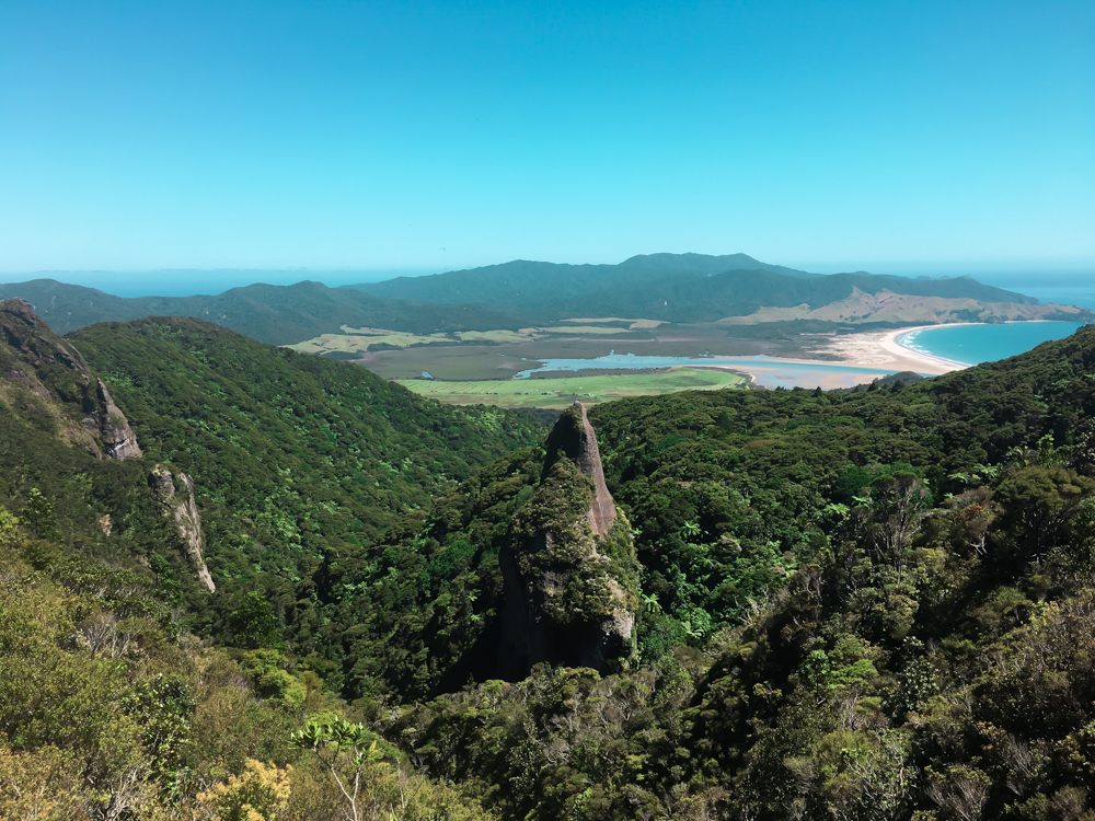 View from the walk to Mt Hobson, Great Barrier Island