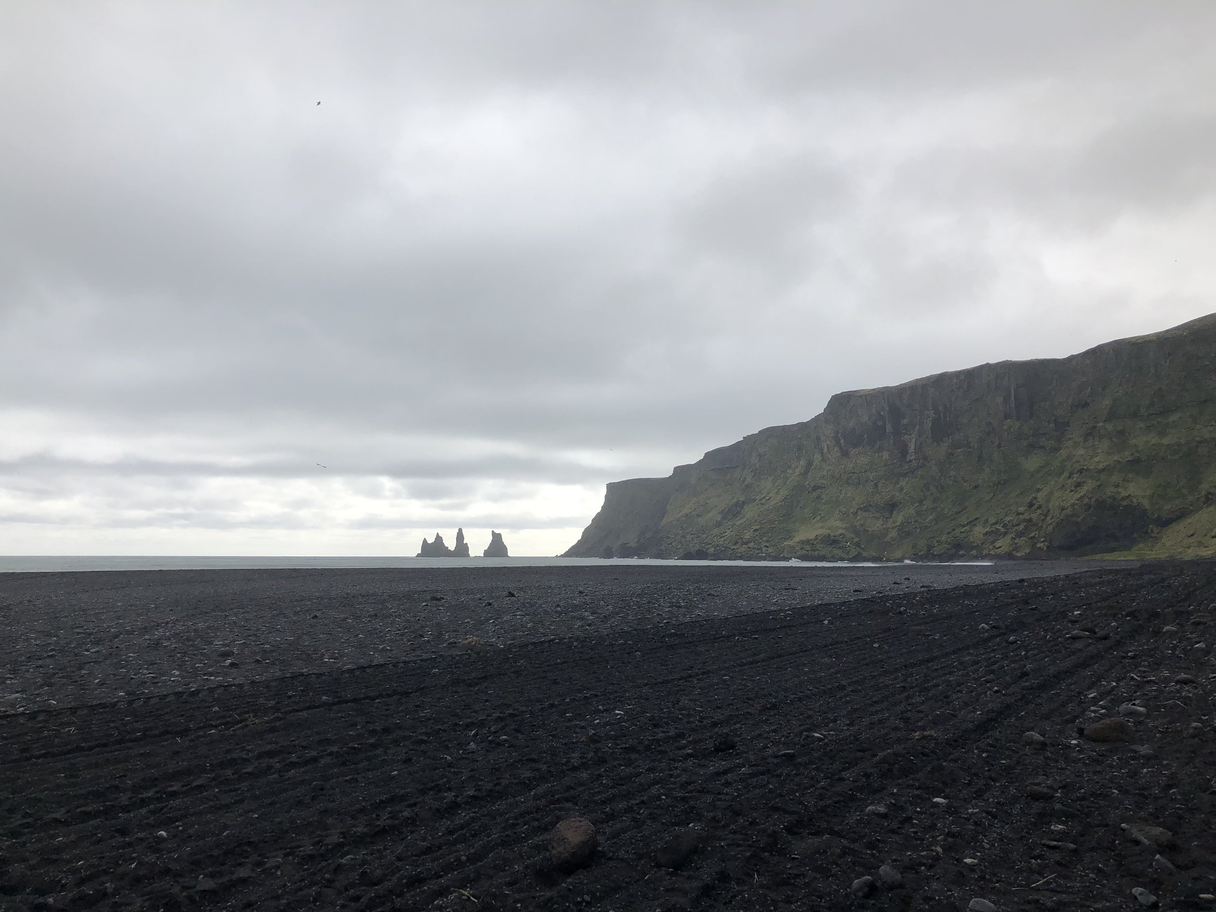 The black sand beach at Vik