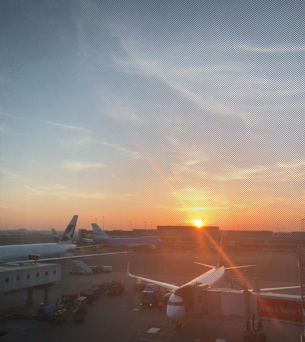 It was a lovely morning when I touched down in Amsterdam