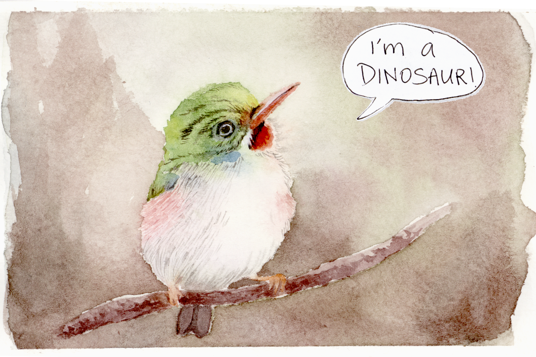 Birds are dinos, too!