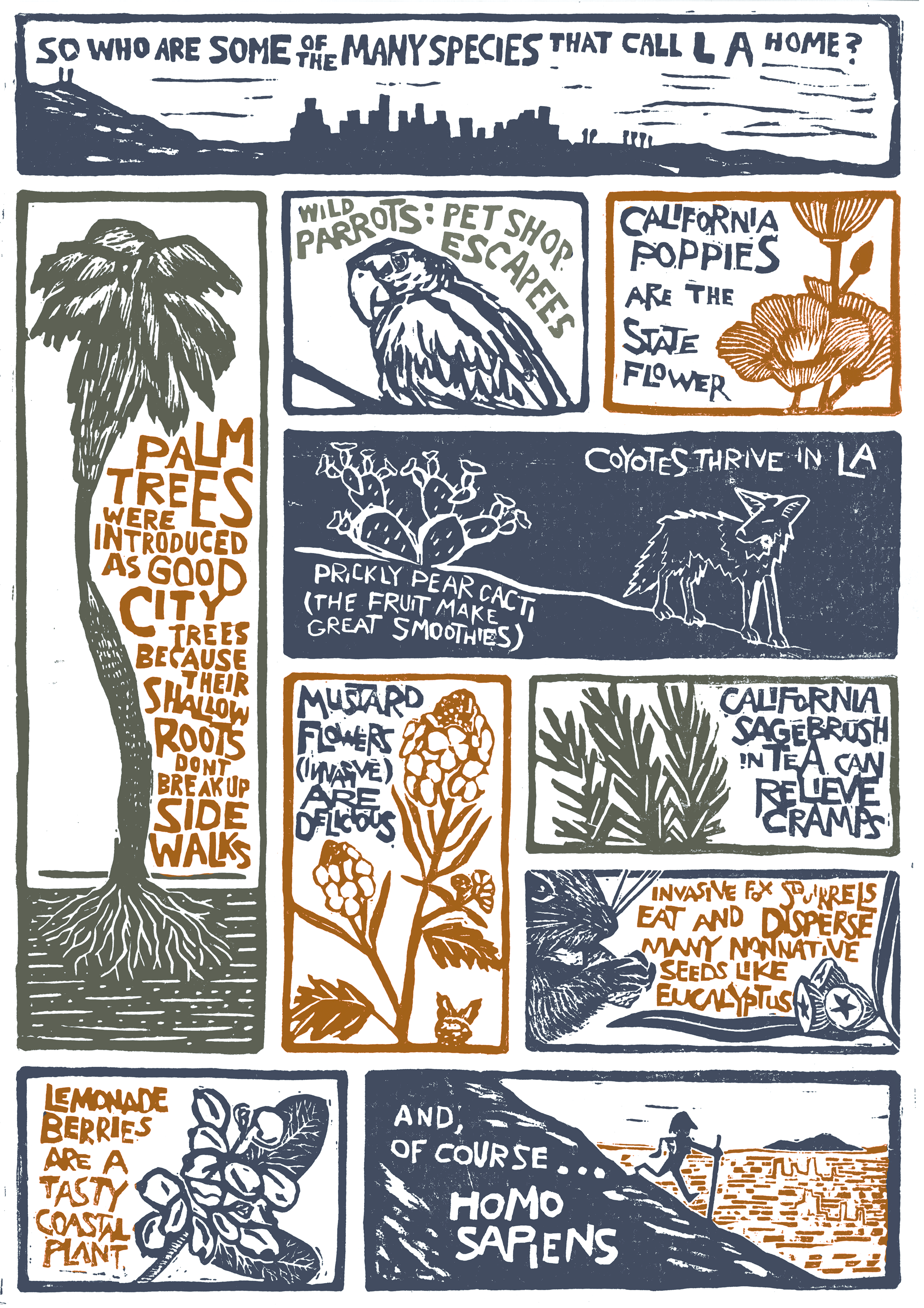 Portraits of Place: Urban Biodiversity in Los Angeles