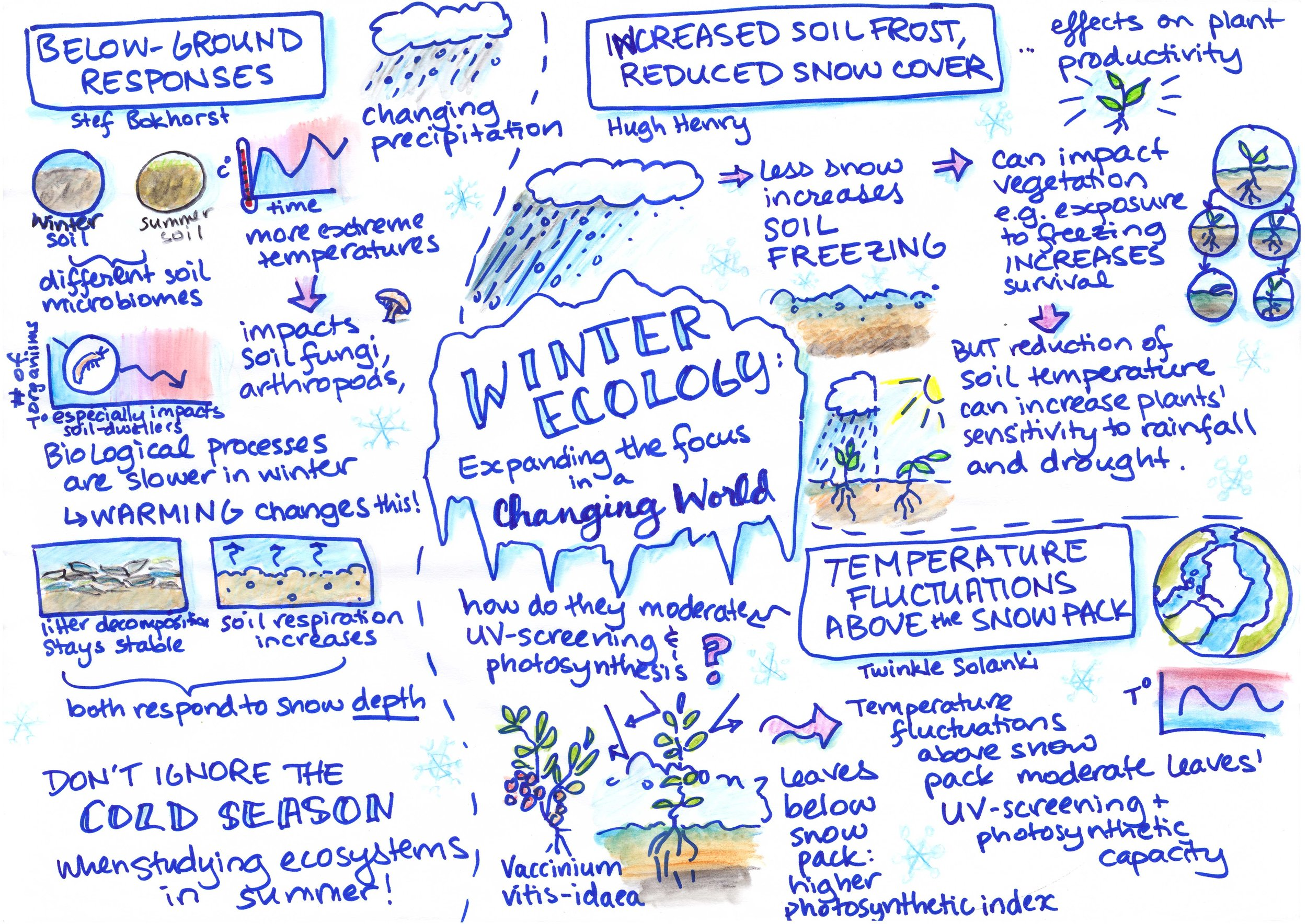 Winter Ecology: Expanding the Focus in a Changing World