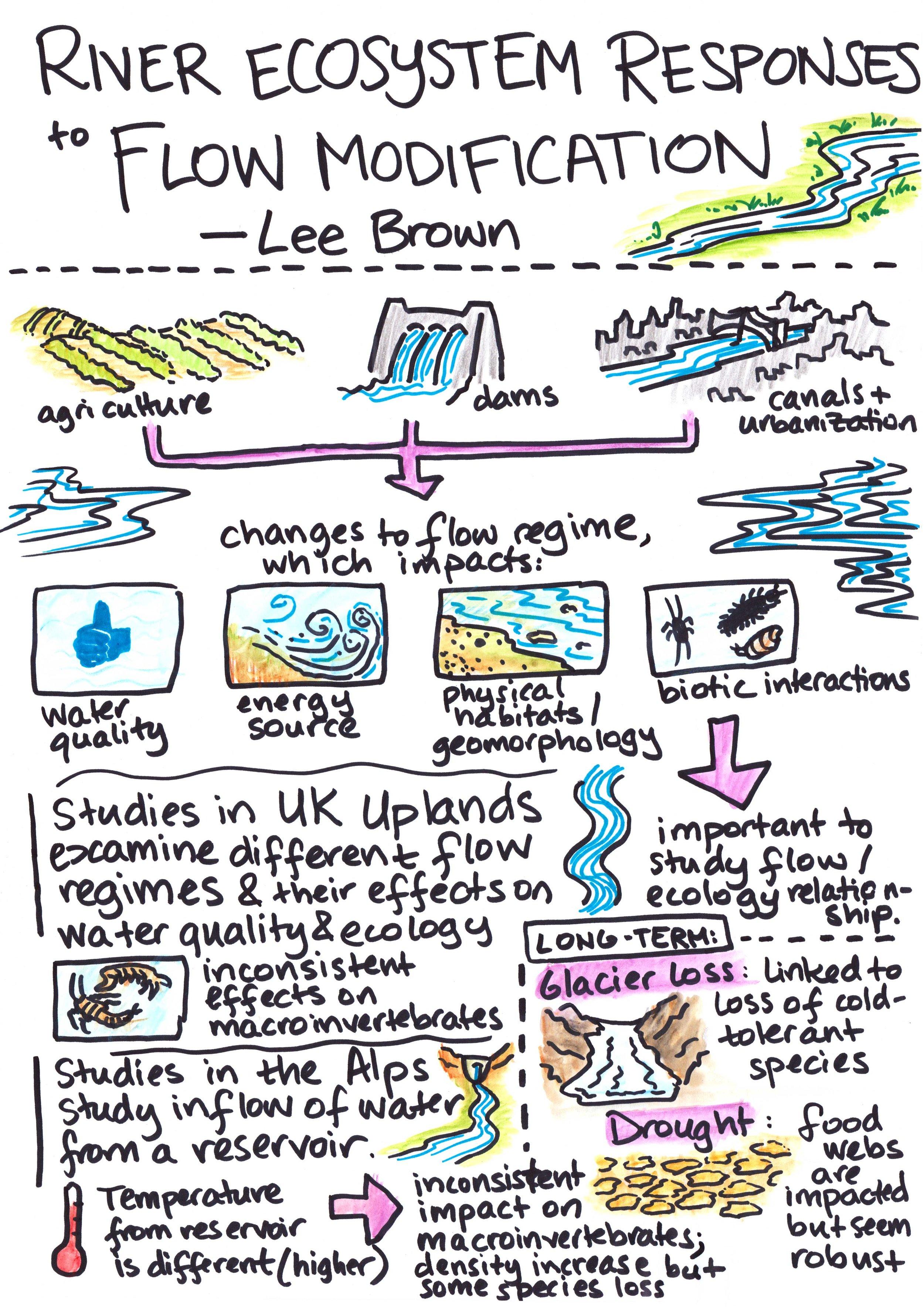 brown-ecohydrology.jpg