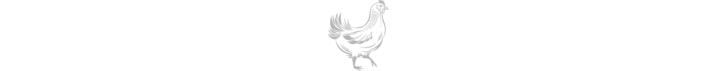 RF_Chicken_silver_sqsp_pagebreak.jpg