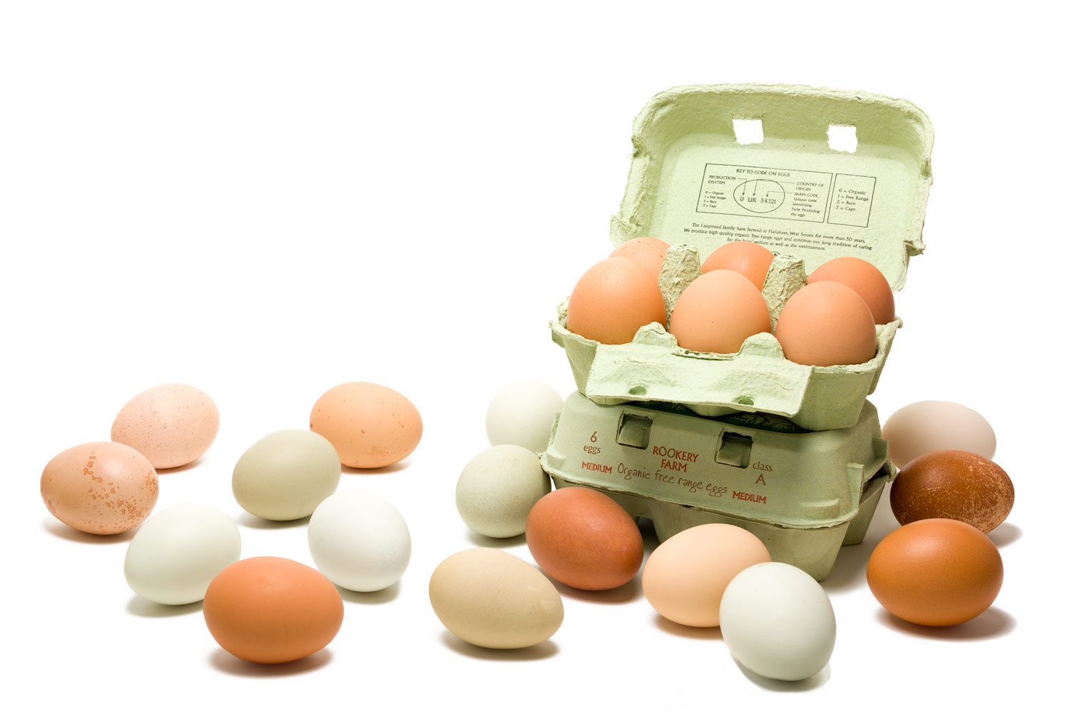 Rookeryeggs-header-transparency.png