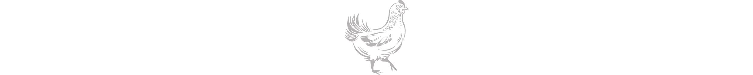 RF_Chicken_white_sqsp_pagebreak.jpg