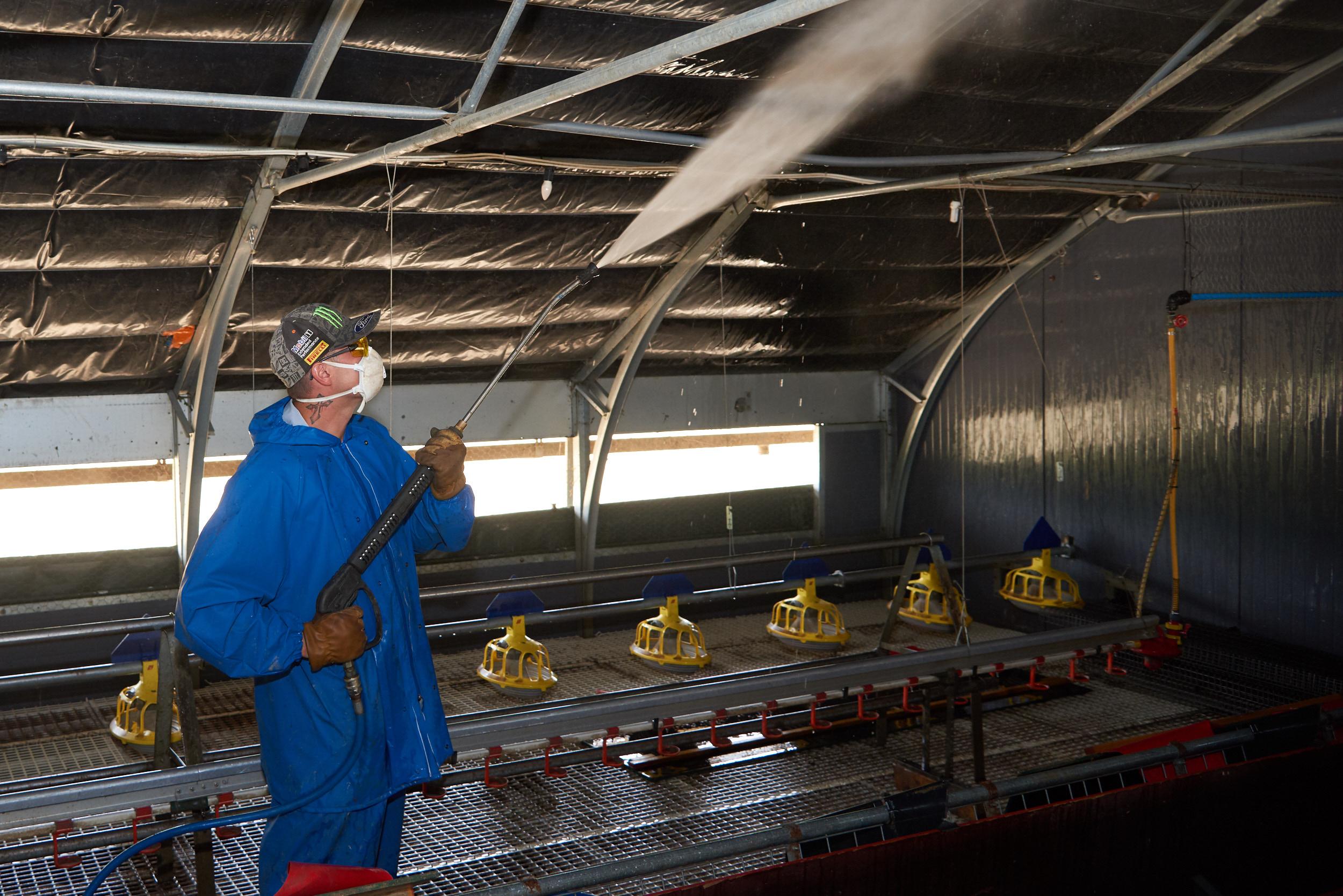 Rookery-Farm-Organic-Eggs-Housekeeping!_011.jpg