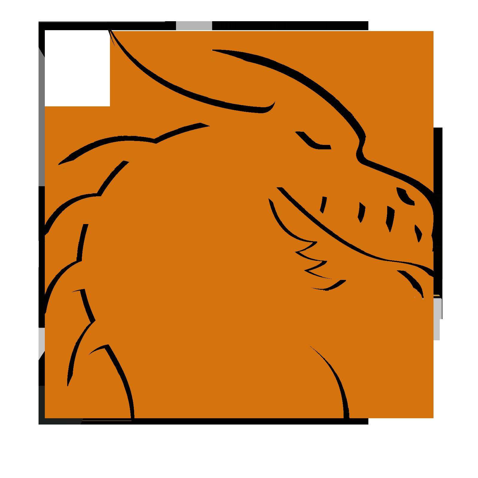 Bronze Dragons