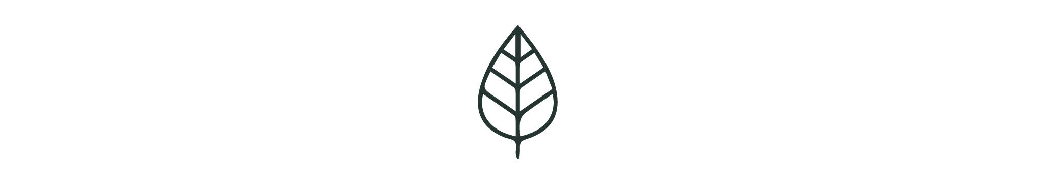 wildcrafted logo-01.jpg