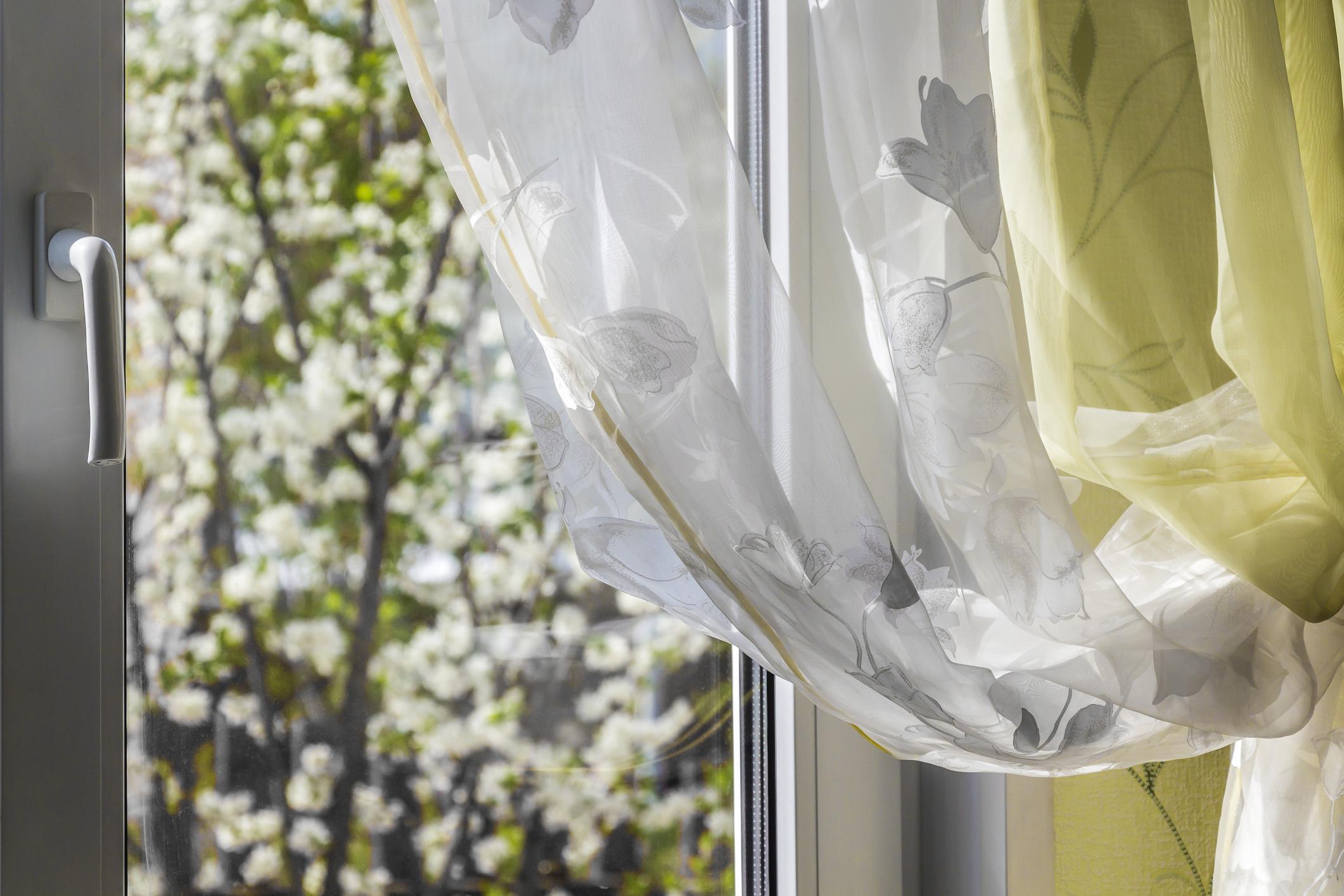 Spring-outside-window-532549648_2125x1416.jpeg