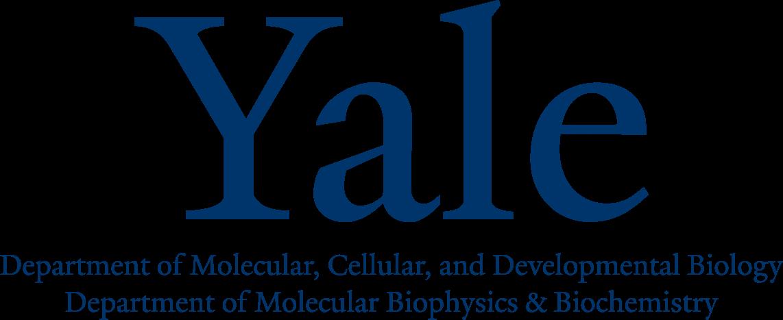 Yaledept .png