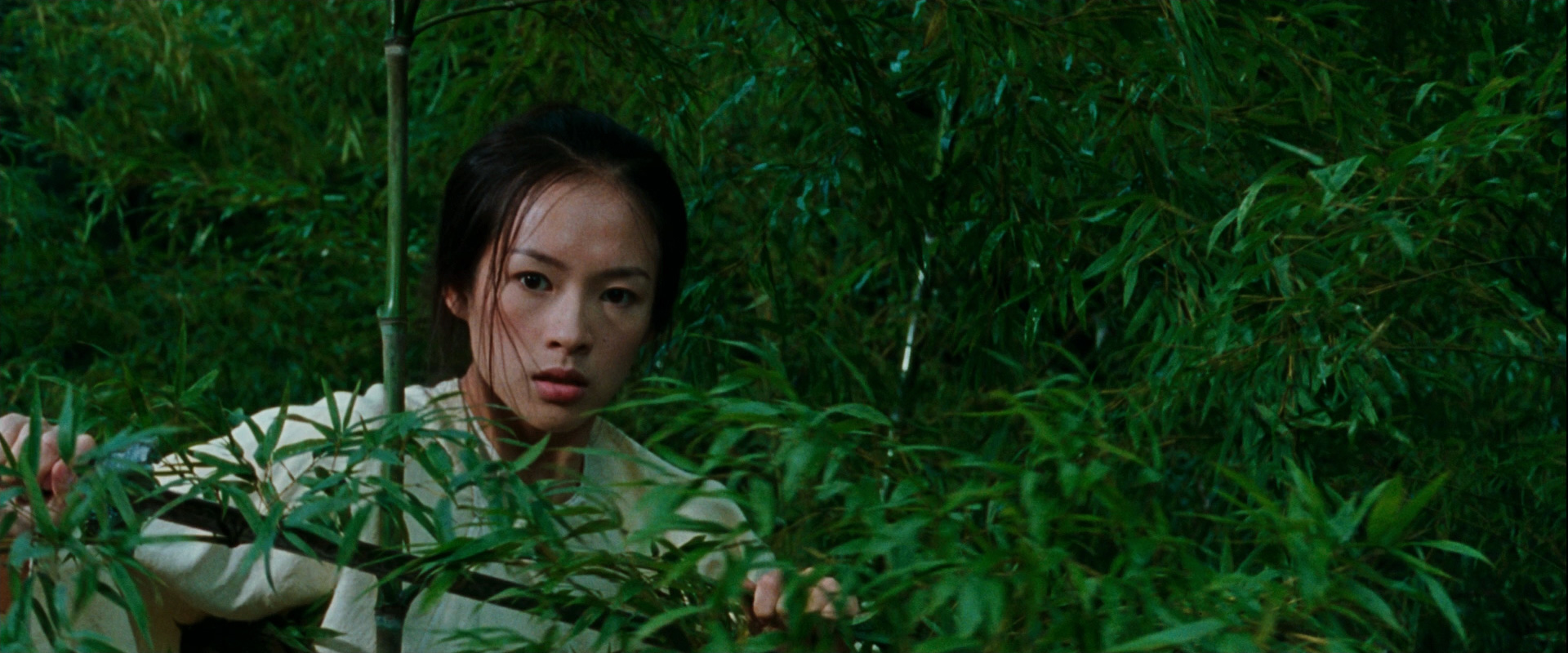 Crouching Tiger Hidden Dragon Bamboo Forest Fight