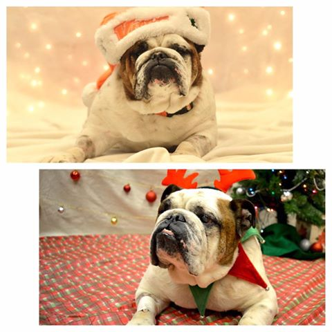 Monty_Brewer_ThenAndNow_Holidays2016_Wcah.jpg