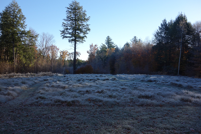 In and Around - First Heavy Frost-18.jpg