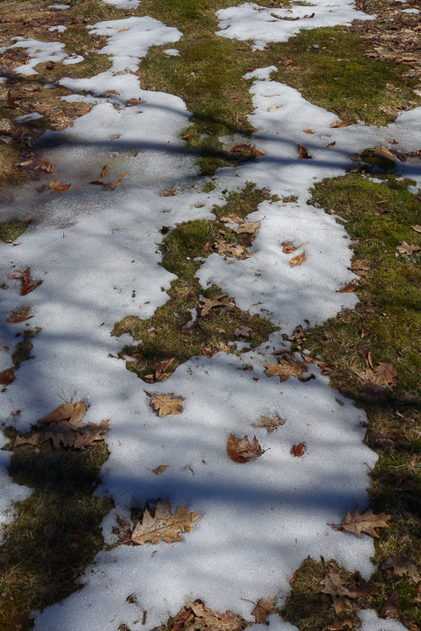 Chase the Snow-9.jpg