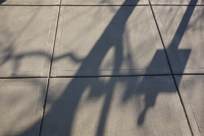 shadows on concrete