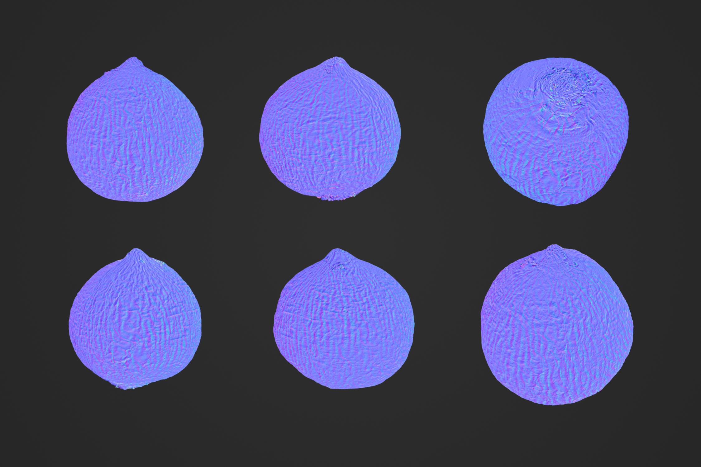 Turnip_1_3.jpg
