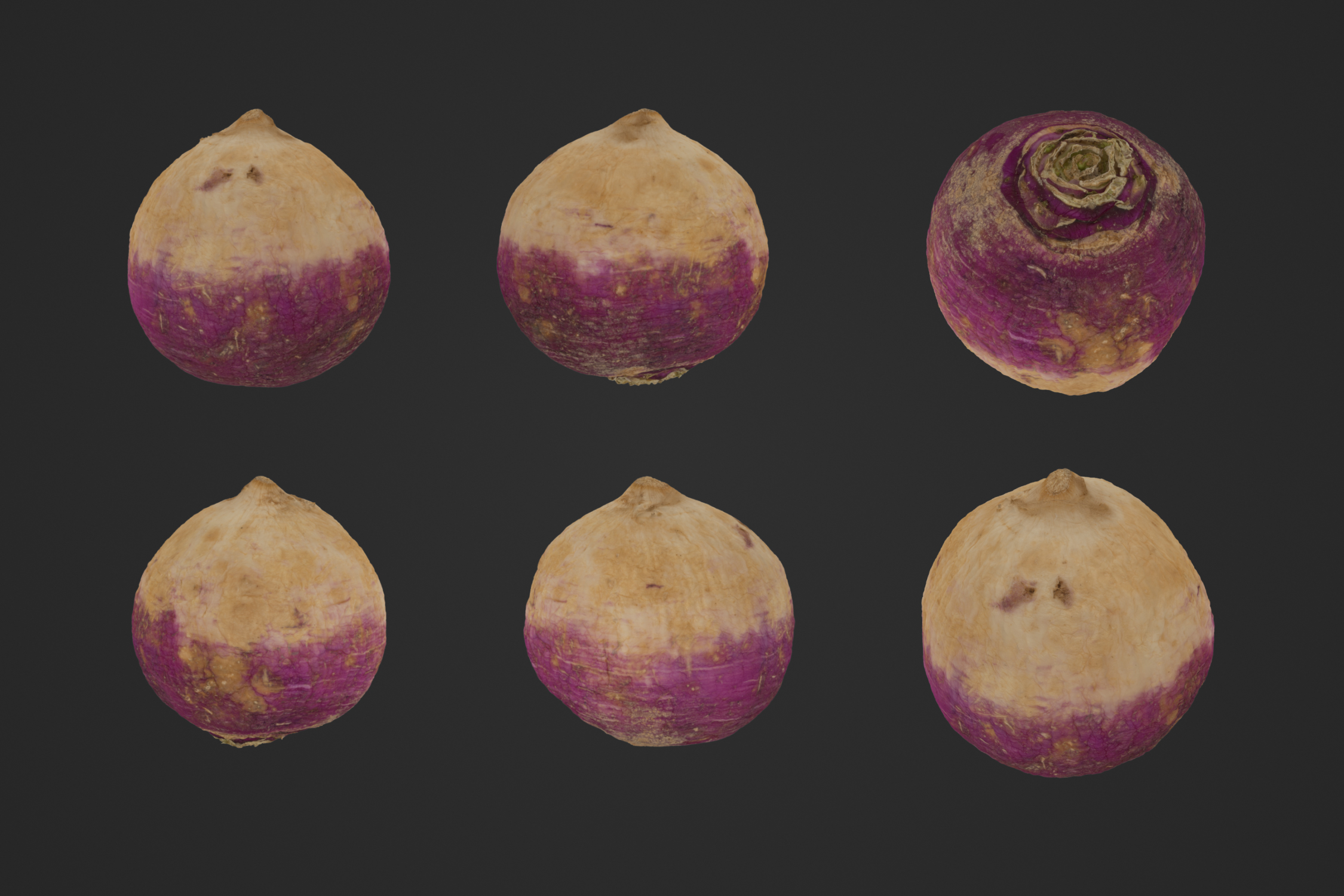 Turnip_1_1.jpg
