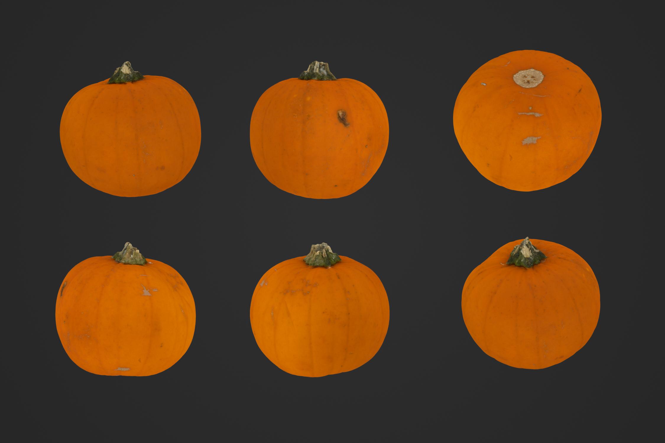Small_Pumpkin_1_1.jpg