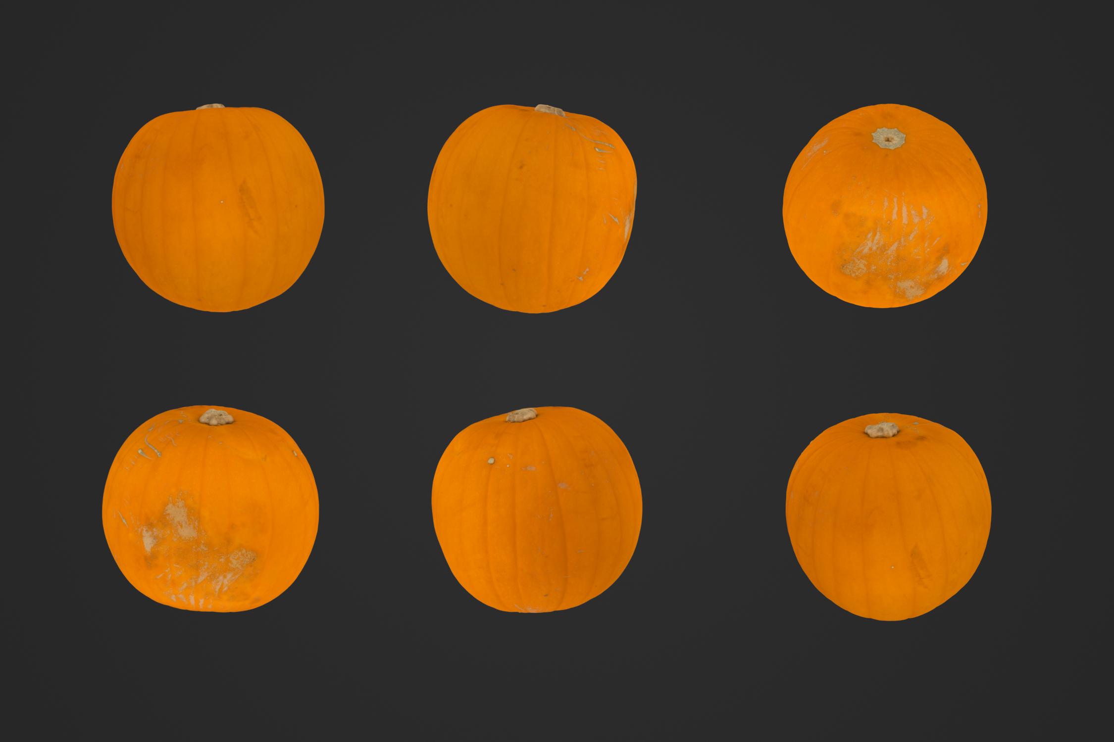 Large_Pumpkin_1_1.jpg