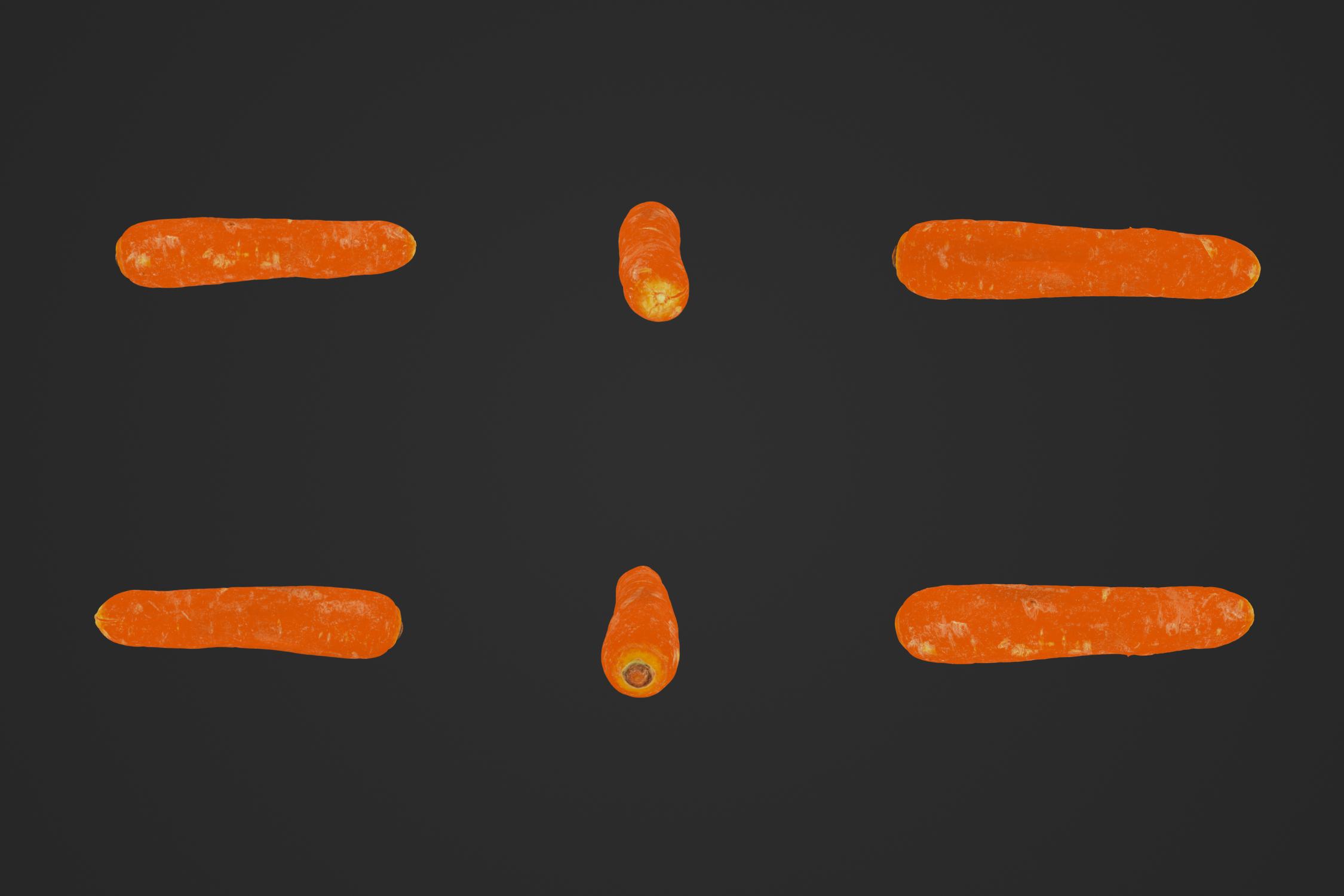Carrot_01_1.jpg