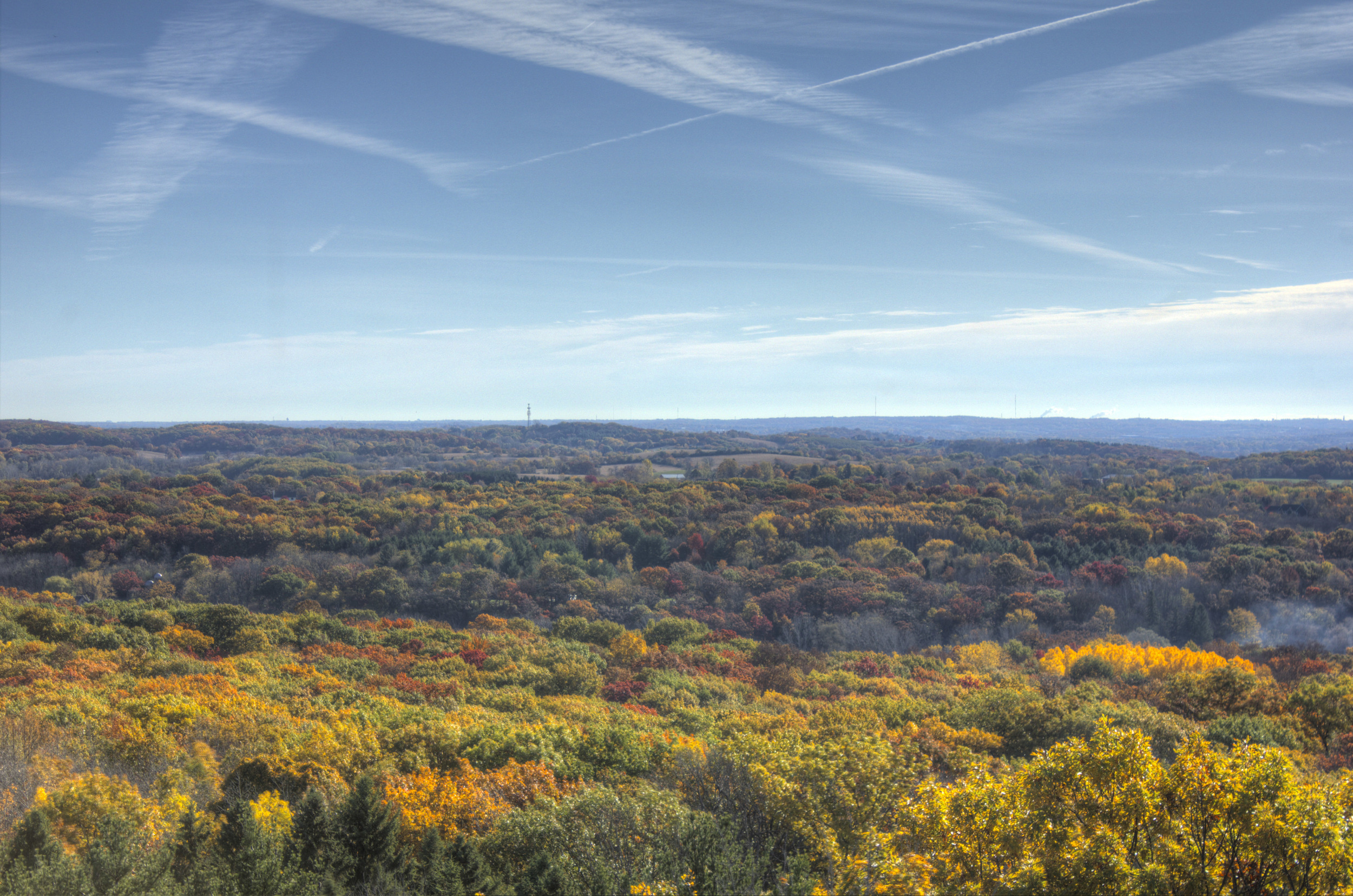 wisconsin-lapham-peak-state-park-full-view-of-the-forest.jpg