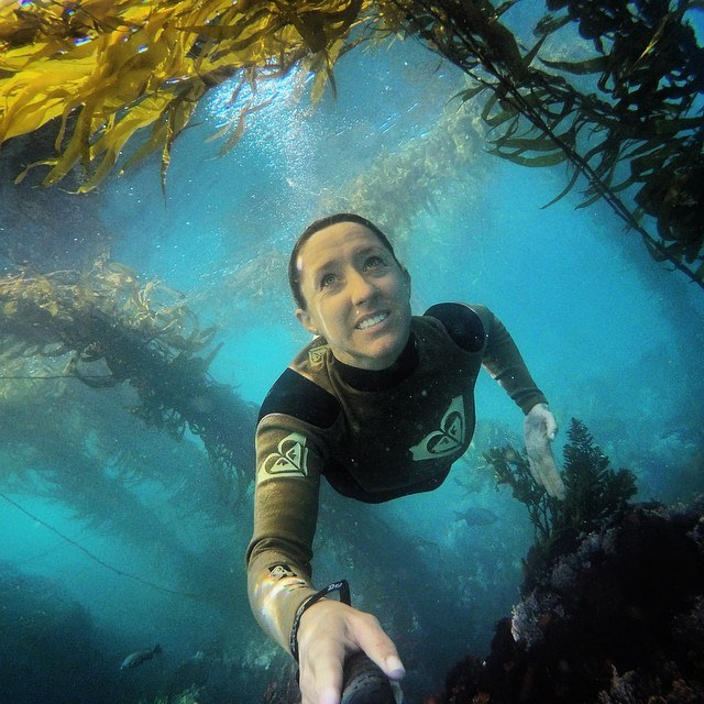 Free diving in the kelp forests in Monterey, California