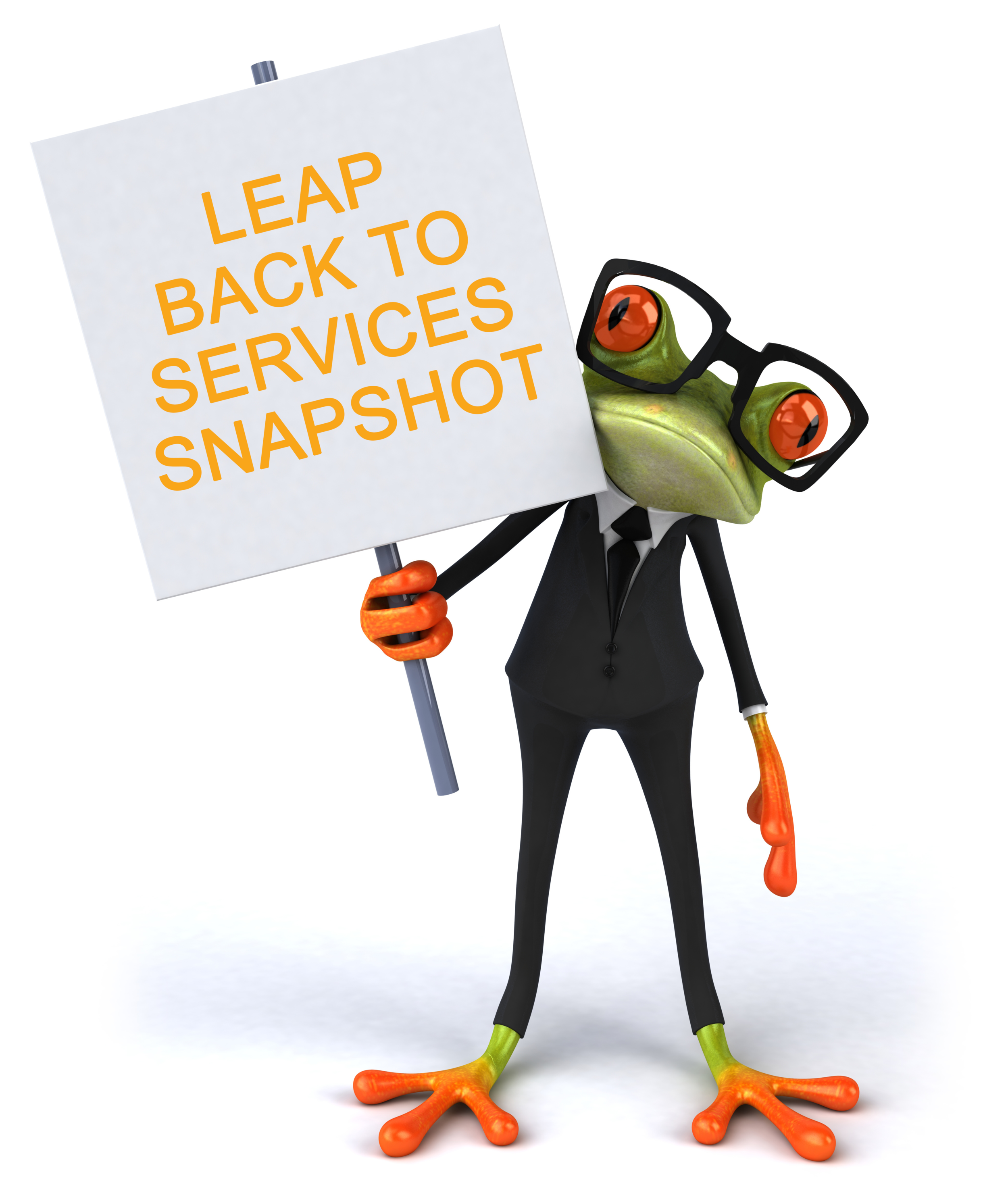 Leap back to Services Suit Frog.png