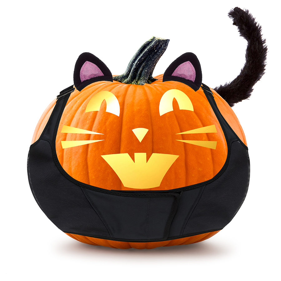 ThermApparel.pumpkin.cat.3x3.jpg