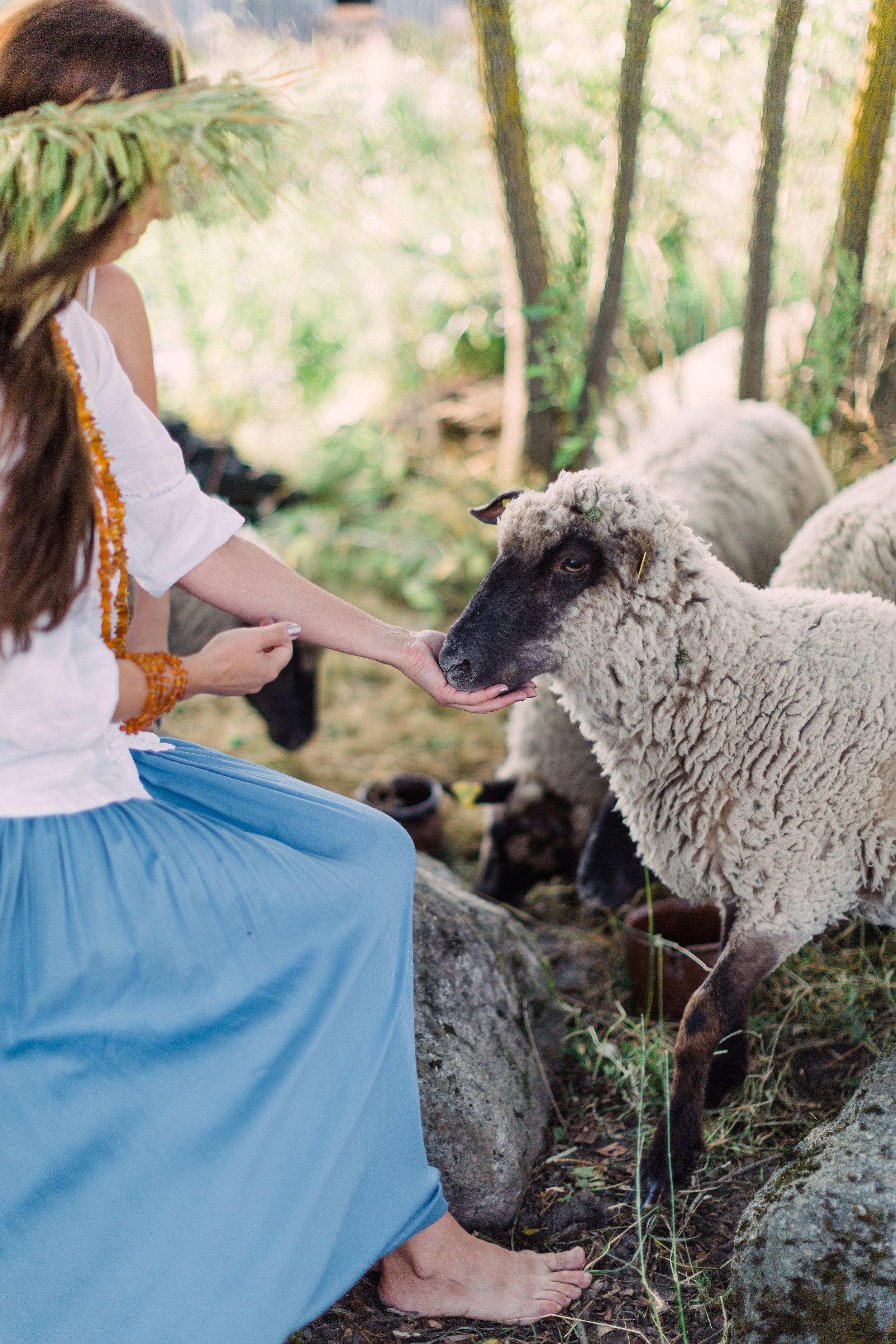 Vitalija Birbaliene and Sheep - Farm Editorial Photo Session_Fine Art Photography_Lithuania_London_UK_2018_Joana Senkute Photography