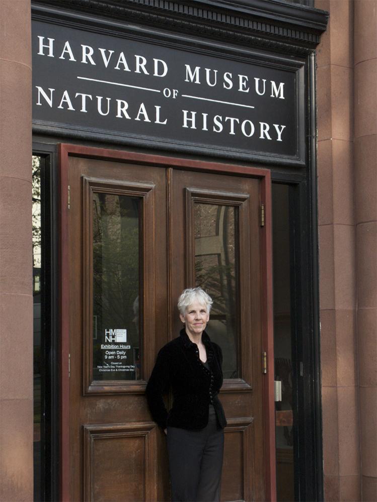 Amanda at Harvard.jpg