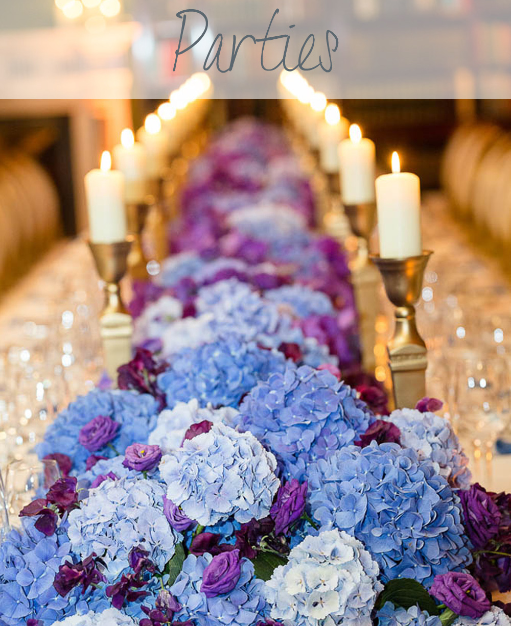 Private Party Planning | Bar Mitzvah | Birthday Party | Baby Shower | Anniversary