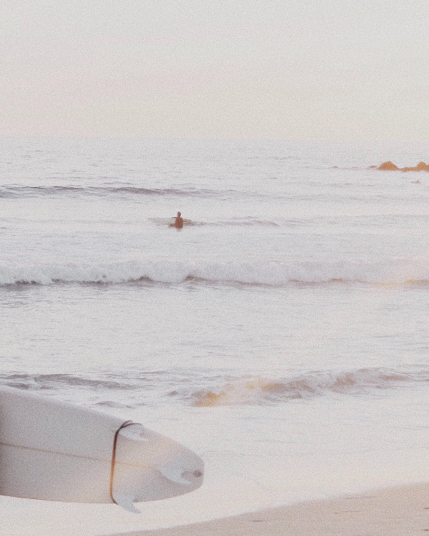 la_losangeles_surf_venice