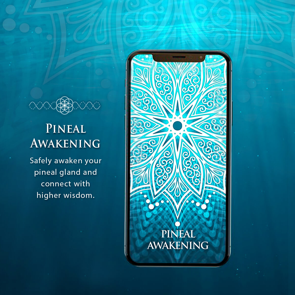 Safely awaken your pineal gland and connect with higher wisdom. This biofield entrainment is designed to energetically awaken your pineal gland and third eye as well as open the pineal gland to the highest available source of knowledge.