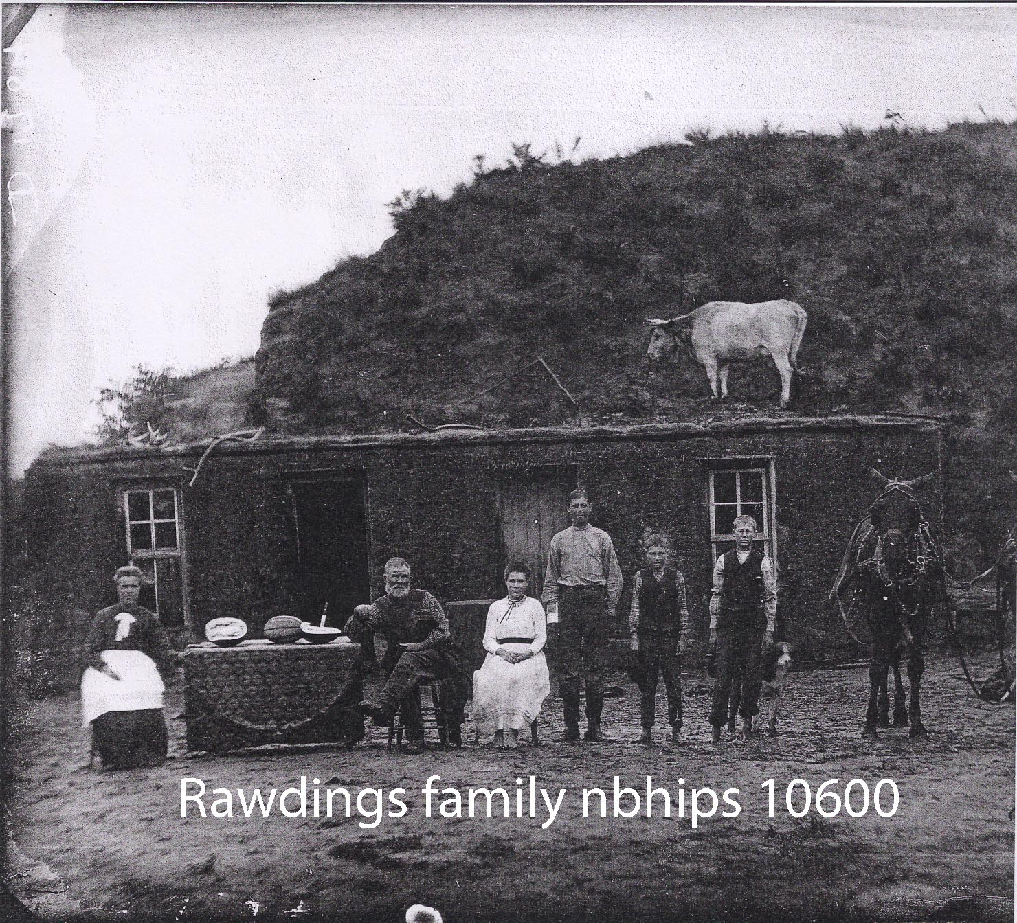 Butcher No 17 Rawdings 10600.jpg