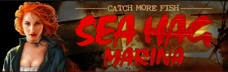 seahag banner.jpg