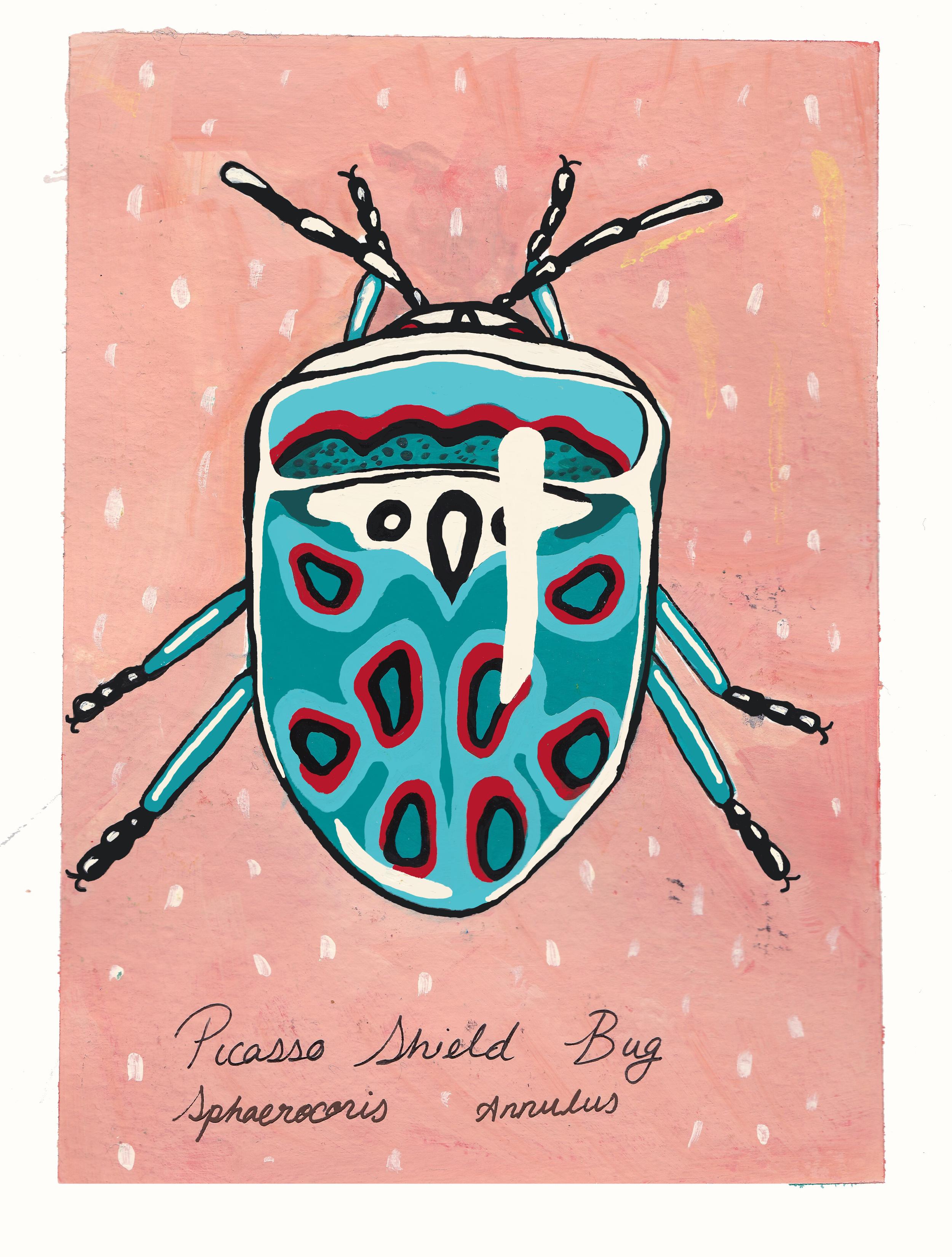 picasso shield bug gouache 5x7 2016