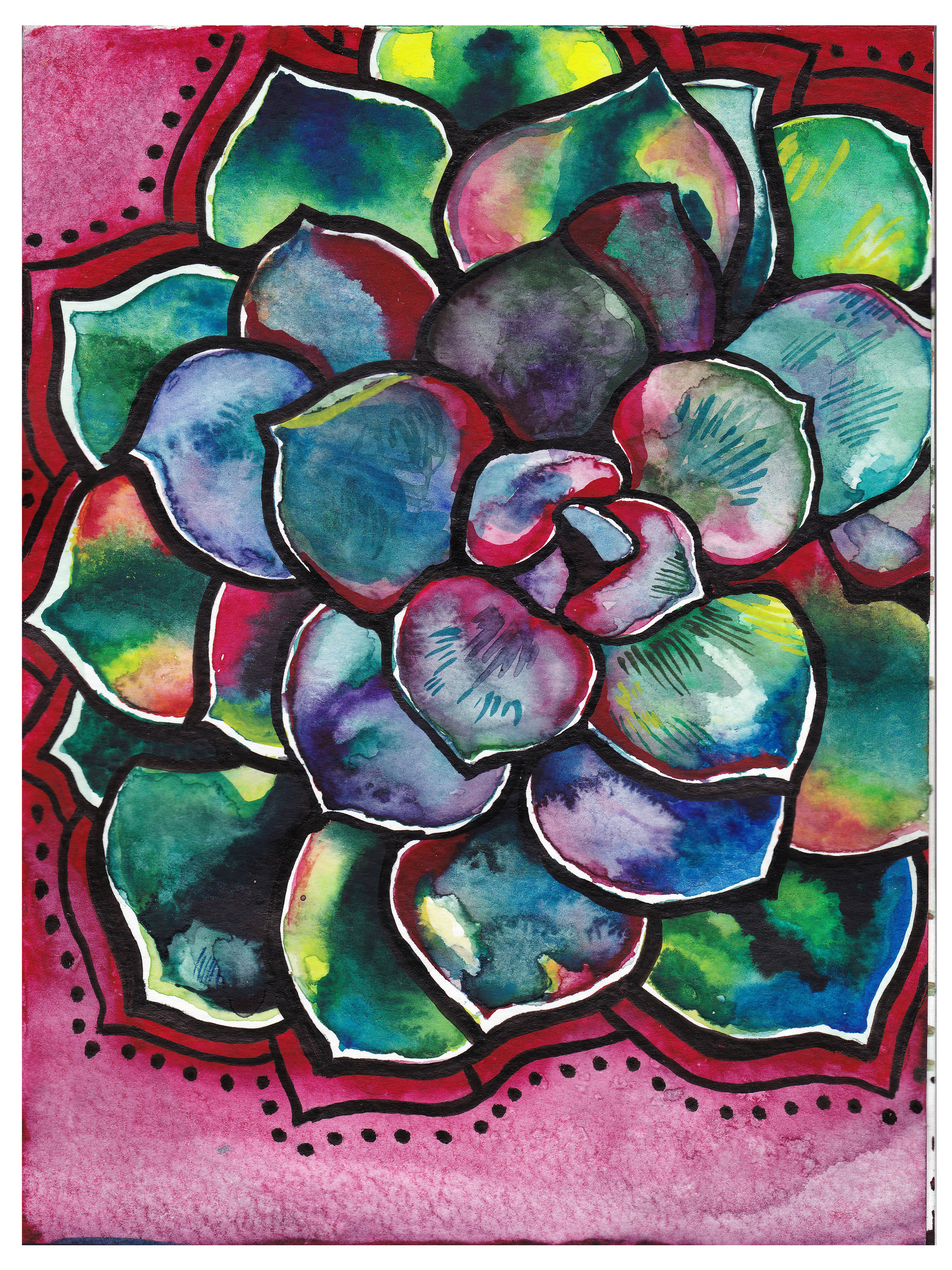 succulenta watercolor and ink 5x7 2016