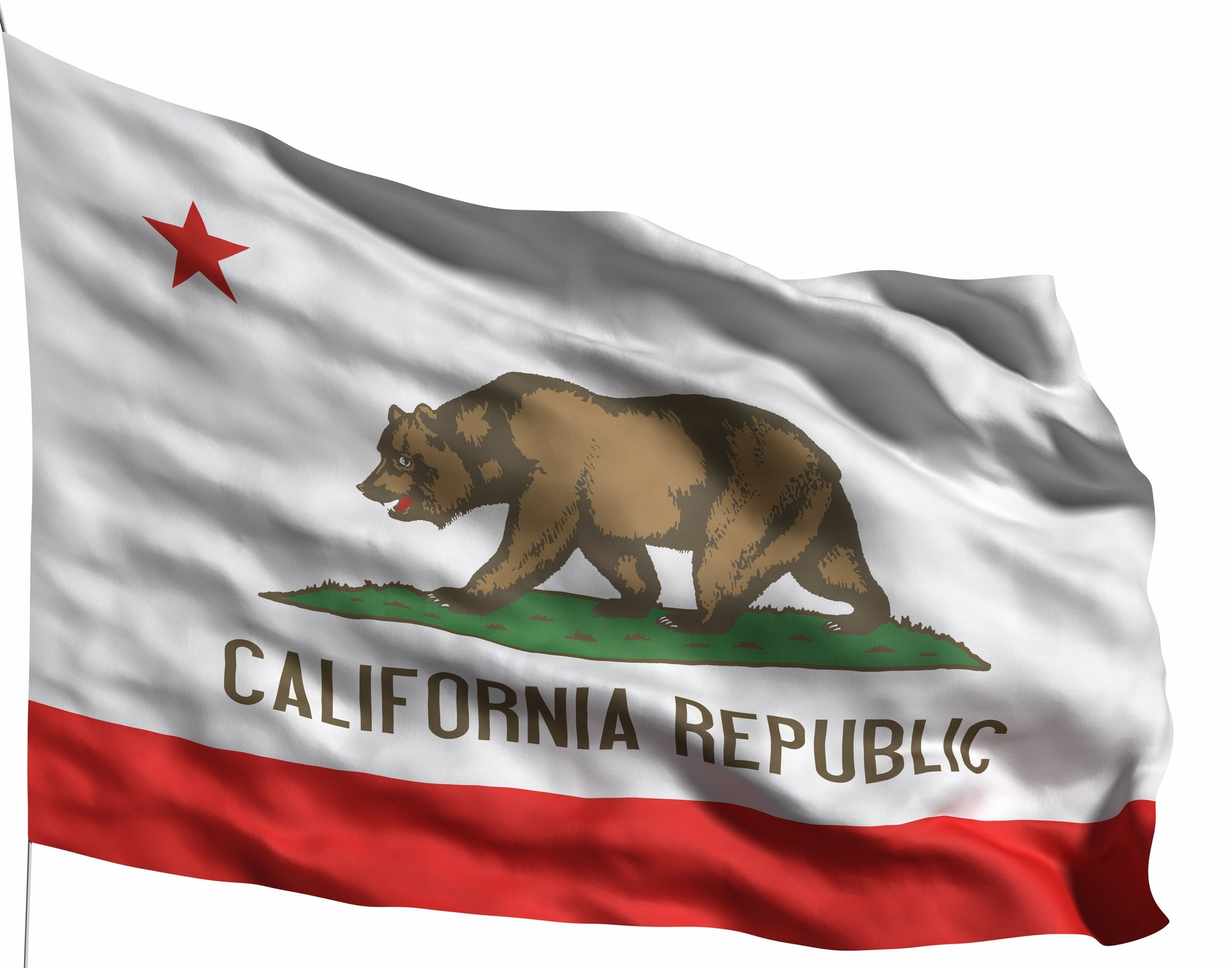 California%2BState%2BFlag.jpg