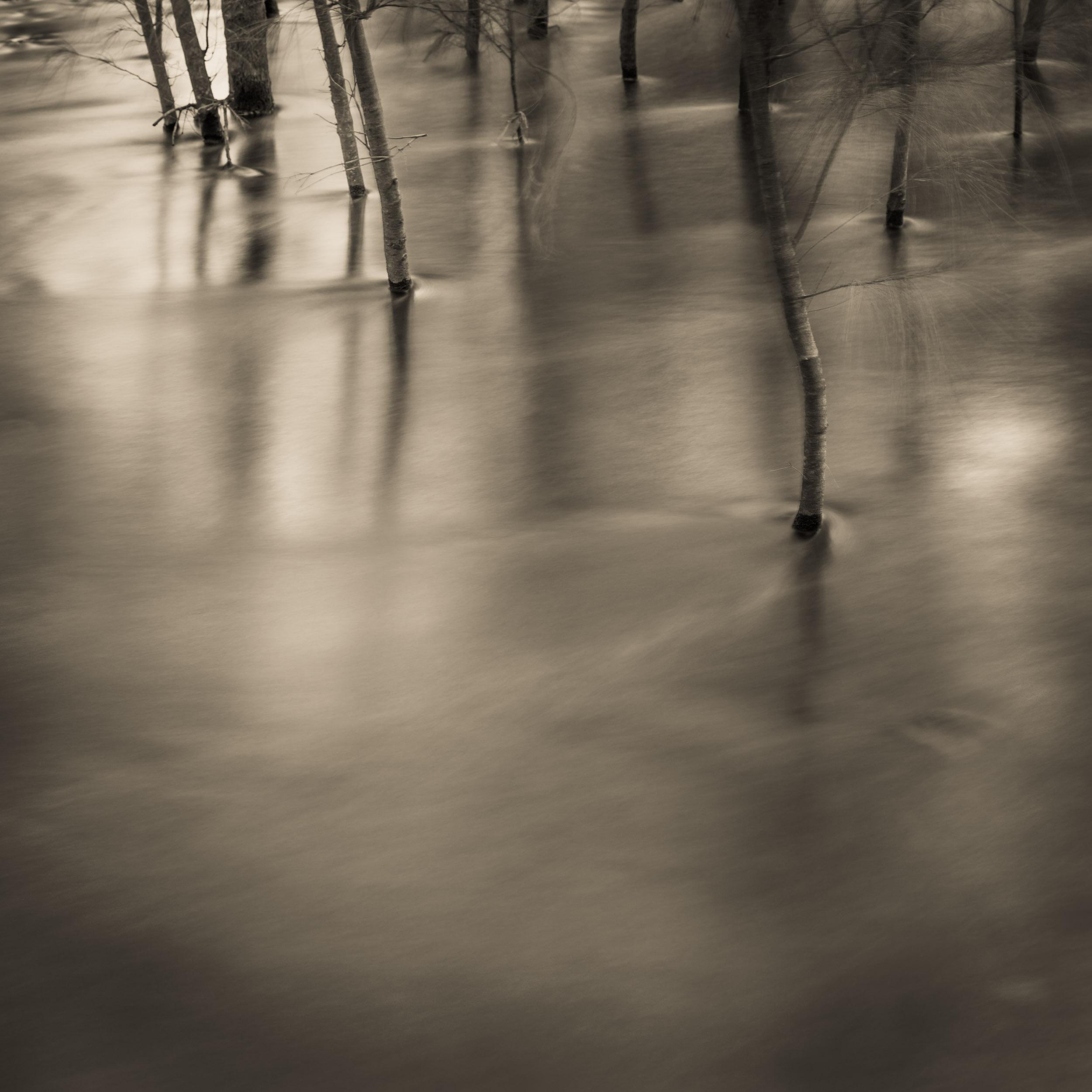 Shoalhaven River, bellow Tallowa Dam in Kangaroo Valley Copyright © Len Metcalf 2017