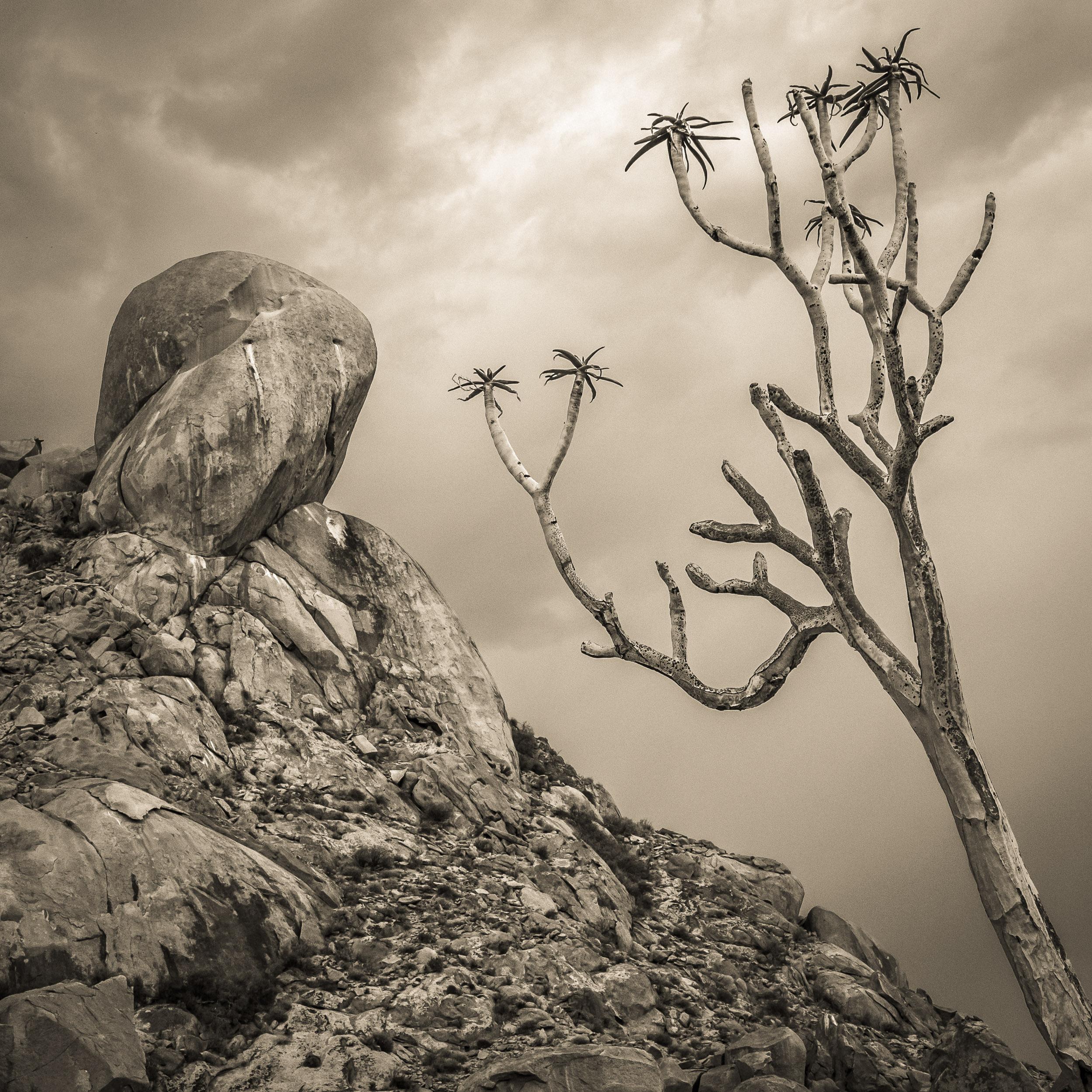 The Toe, Richtersveld, South Africa, Copyright © Len Metcalf