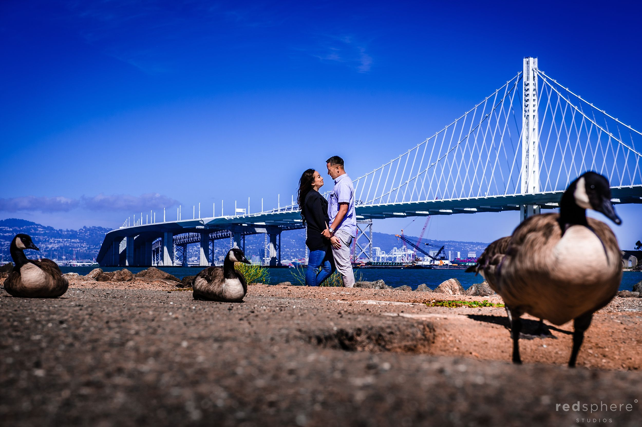 Treasure Island Engagement Session, New Bay Bridge