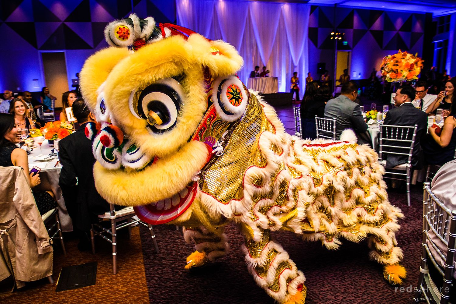 Chinese Lion Dance at Wedding After Party