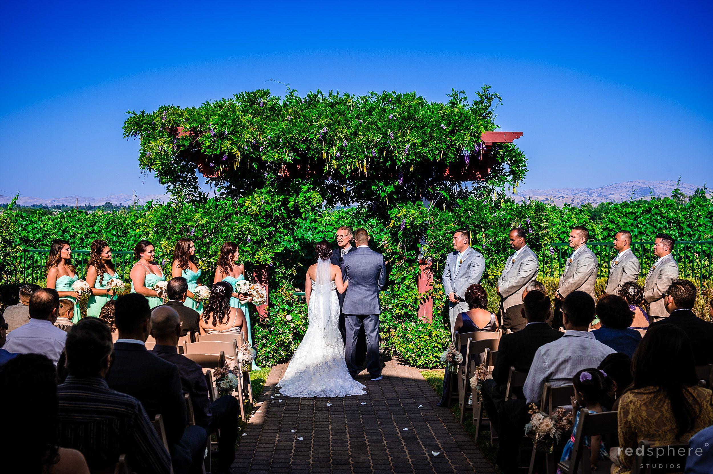 Bride and Groom Face Officiant at Pleasanton, California Wedding