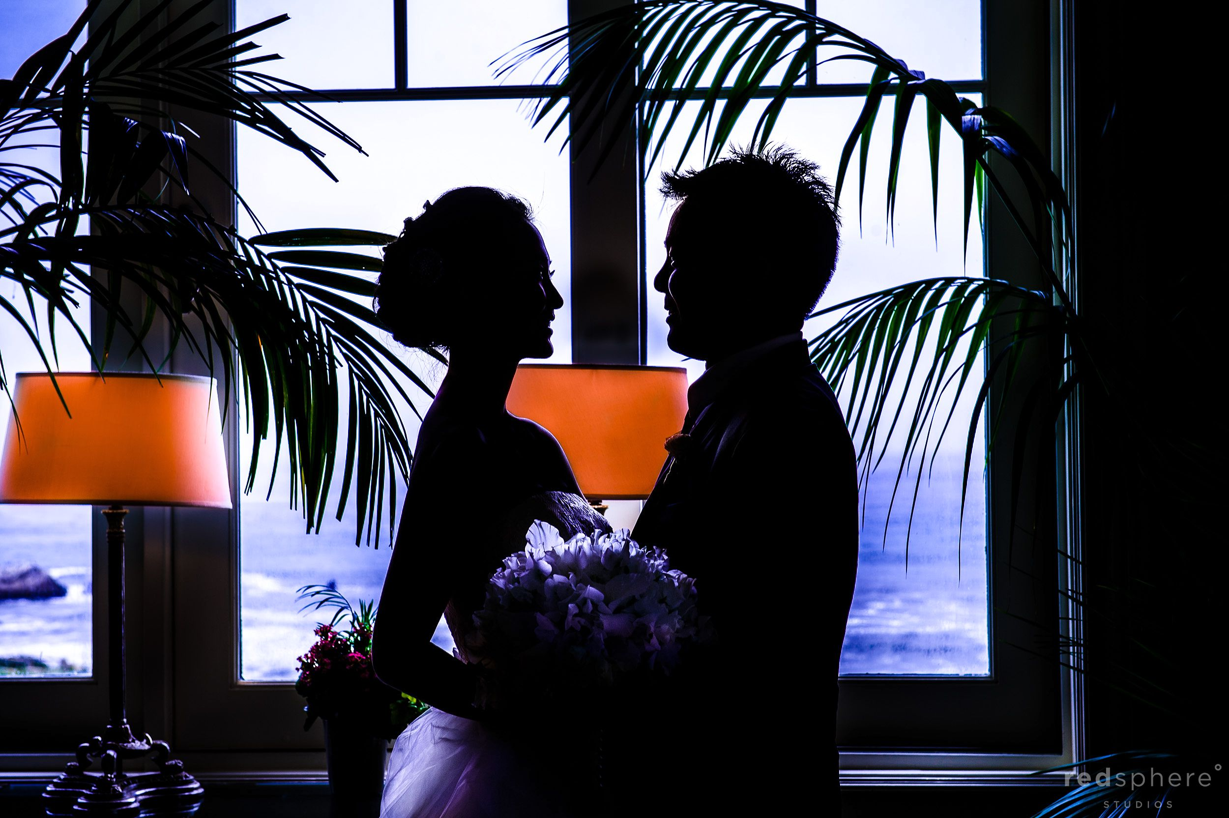 Bride and Groom Silhouette, Palm Tree Background
