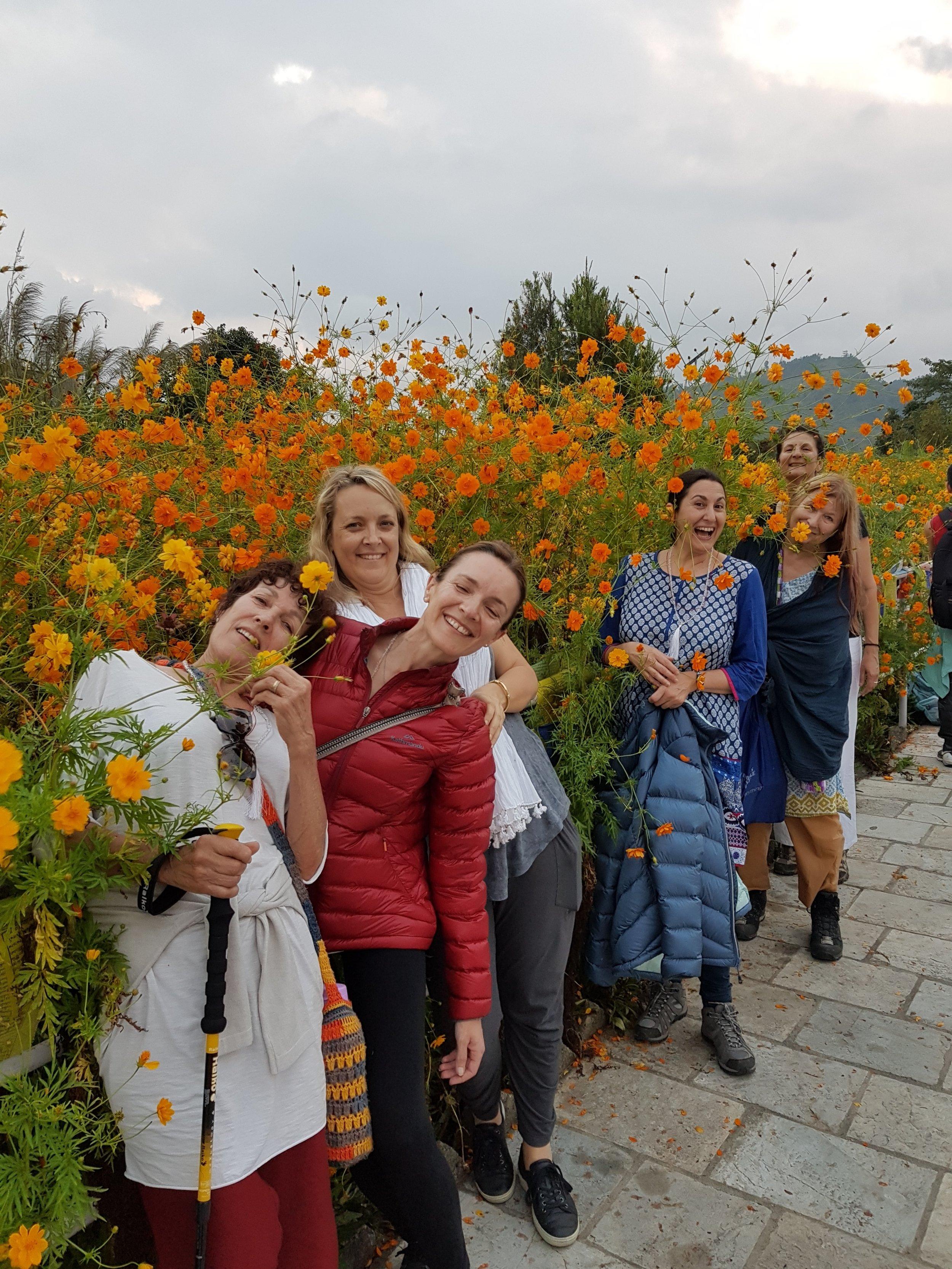 PeacePagodagroupflowers.jpg