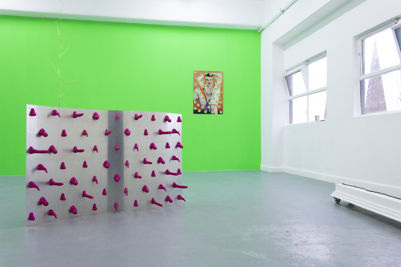 Jake Preval, Haiku for a Honey Girl, BLINDSIDE 2016, installation view.