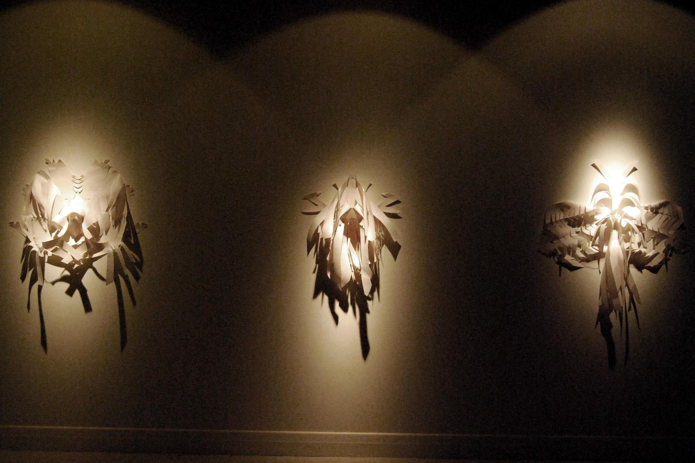3. Lauren Simmonds Skin and Bone series 2010 installation view Paper.jpg