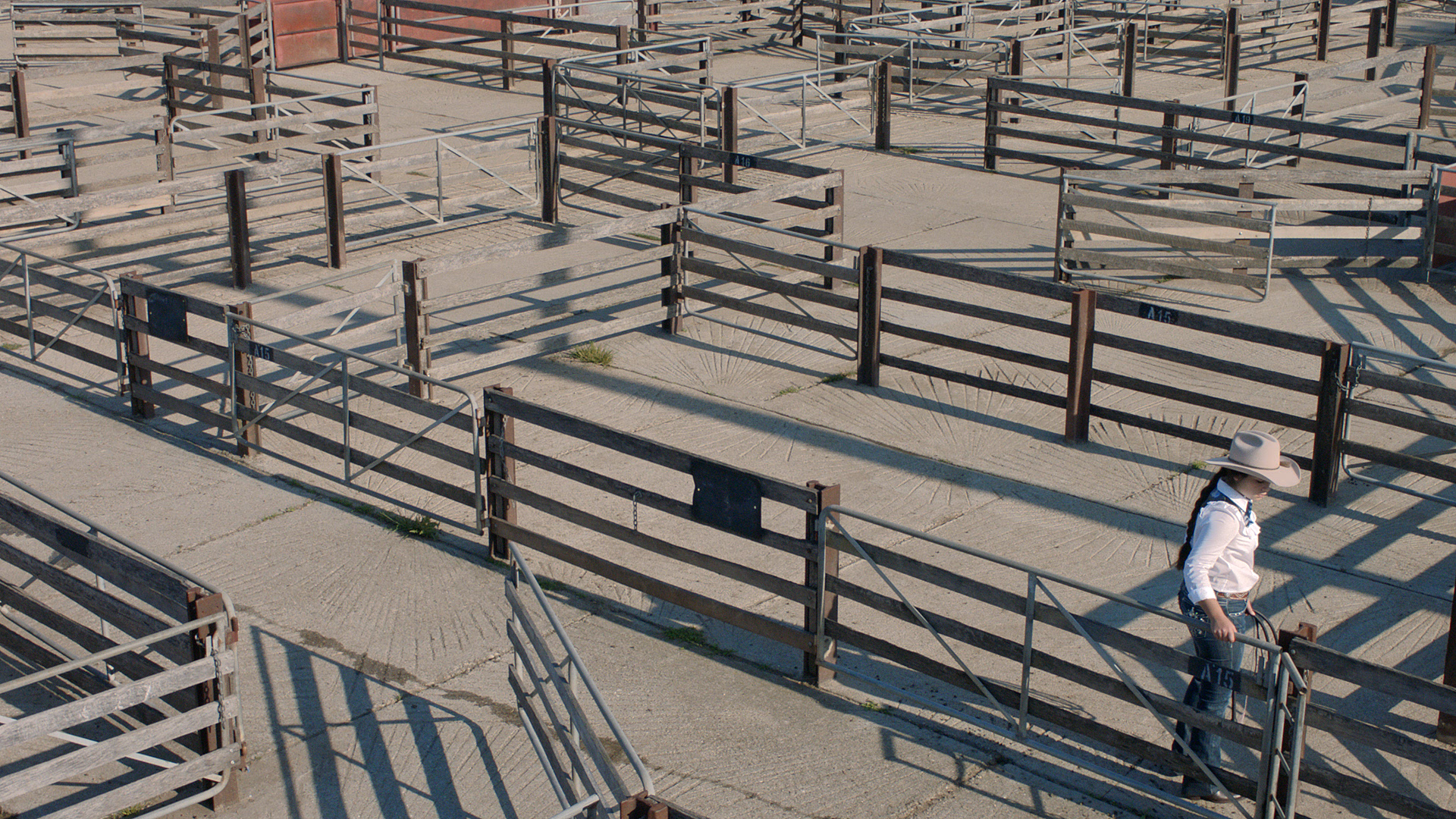Zanny Begg,  The Bullwhip Effect  (still), 2017, 6m